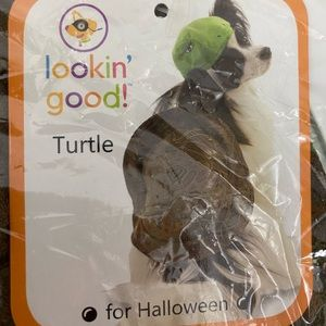 NWT Turtle Costume for Dogs Size XS